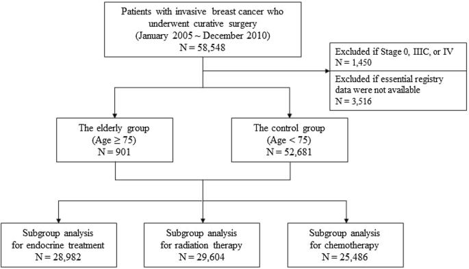 Optimal Treatment Of Breast Cancer In Women Older Than 75 Years A Korea Breast Cancer Registry Analysis Springerlink