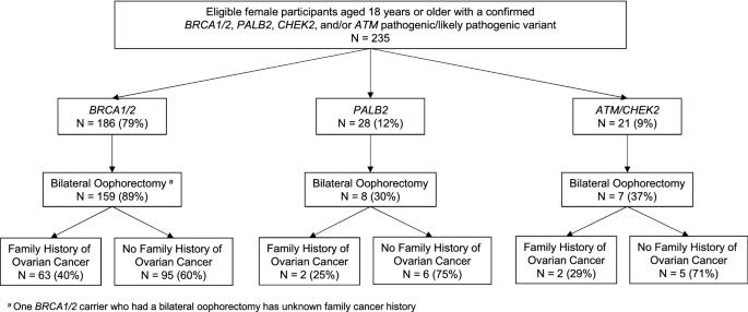 Cancer Risk Management Among Female Brca1 2 Palb2 Chek2 And Atm Carriers Springerlink