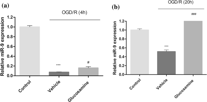 miR-9 Upregulation Integrates Post-ischemic Neuronal Survival and ...