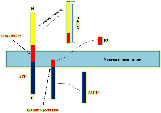 Elucidating Critical Proteinopathic Mechanisms and Potential Drug ...