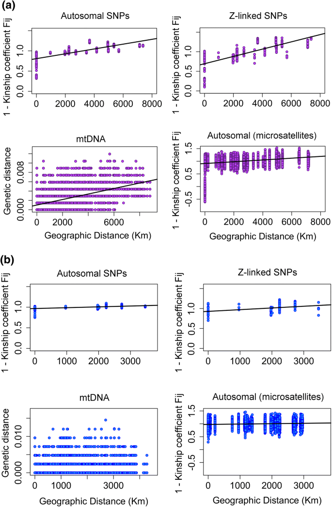Population differentiation and historical demography of the ...