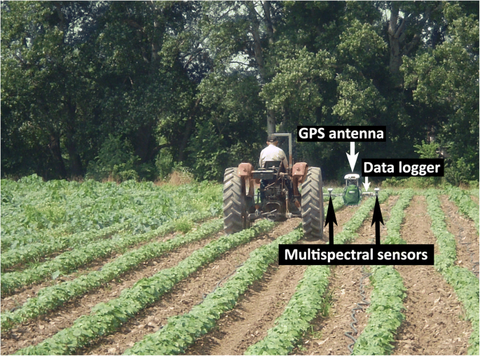 Weed mapping in cotton using ground-based sensors and GIS ...