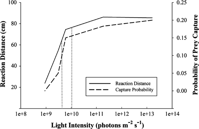 Effect of light intensity and substrate type on siscowet lake ...