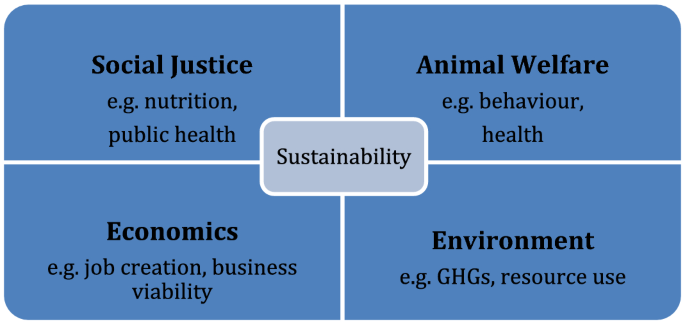 The Ethics of Laying Hen Genetics   SpringerLink