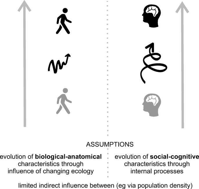 Theoretical and Methodological Approaches to Ecological Changes ...