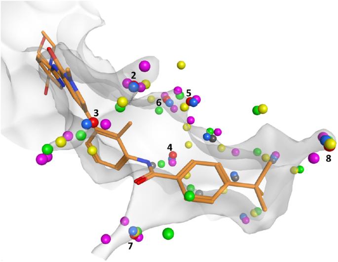 Water Molecule Labeled