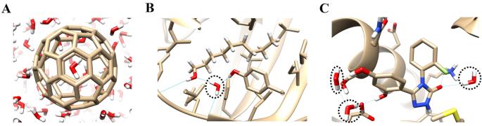 Enhancing water sampling of buried binding sites using ...