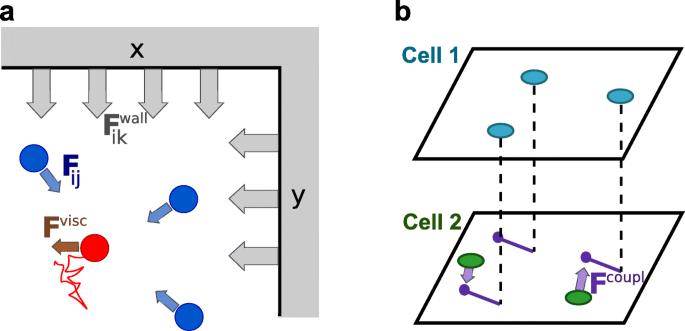 Modeling grid fields instead of modeling grid cells   SpringerLink