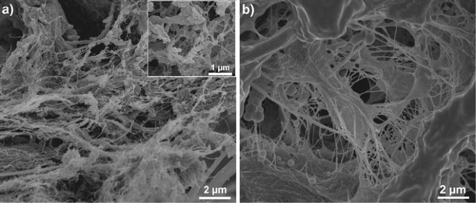 Nanofibrillated cellulose in wood coatings: mechanical properties ...