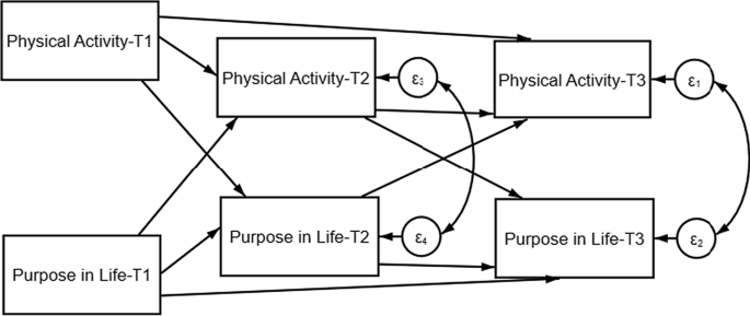The bidirectional relationship between sense of purpose in life ...