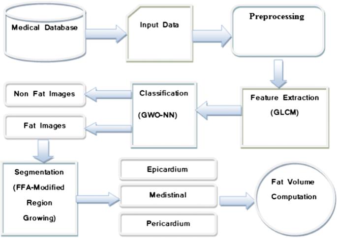 Adaptive Fruitfly Based Modified Region Growing Algorithm for ...