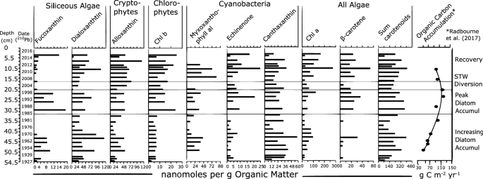 Source and quantity of carbon influence its sequestration in ...