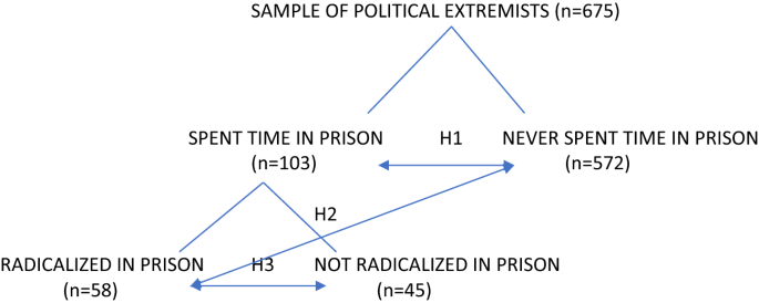 Prison and Violent Political Extremism in the United States ...