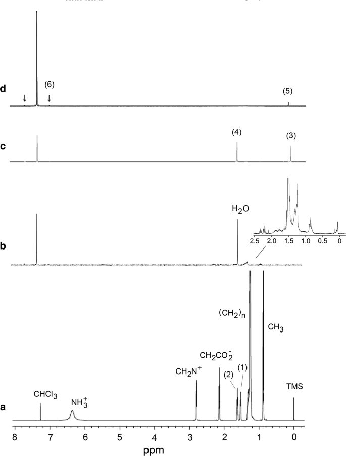 Molecular Interactions And Mechanisms In The 1 H Nmr Relaxation Of