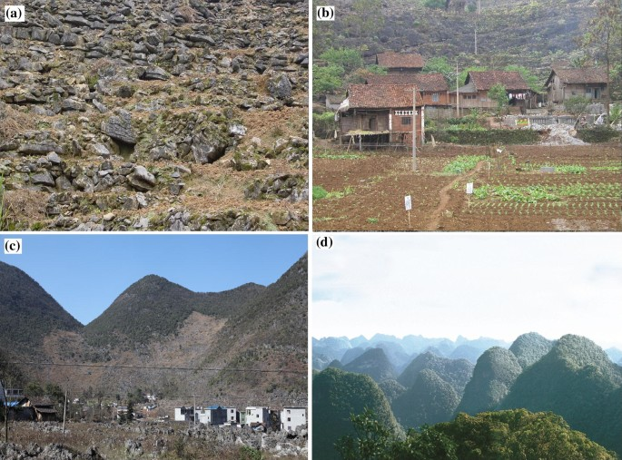 Karst landscapes of China: patterns, ecosystem processes and ...