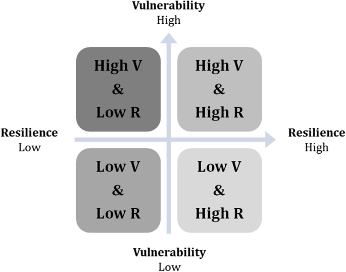 Exploring the interactions between vulnerability, resilience and ...
