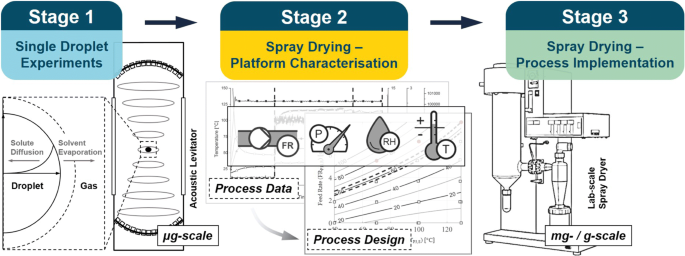 Peptide Isolation via Spray Drying: Particle Formation, Process ...