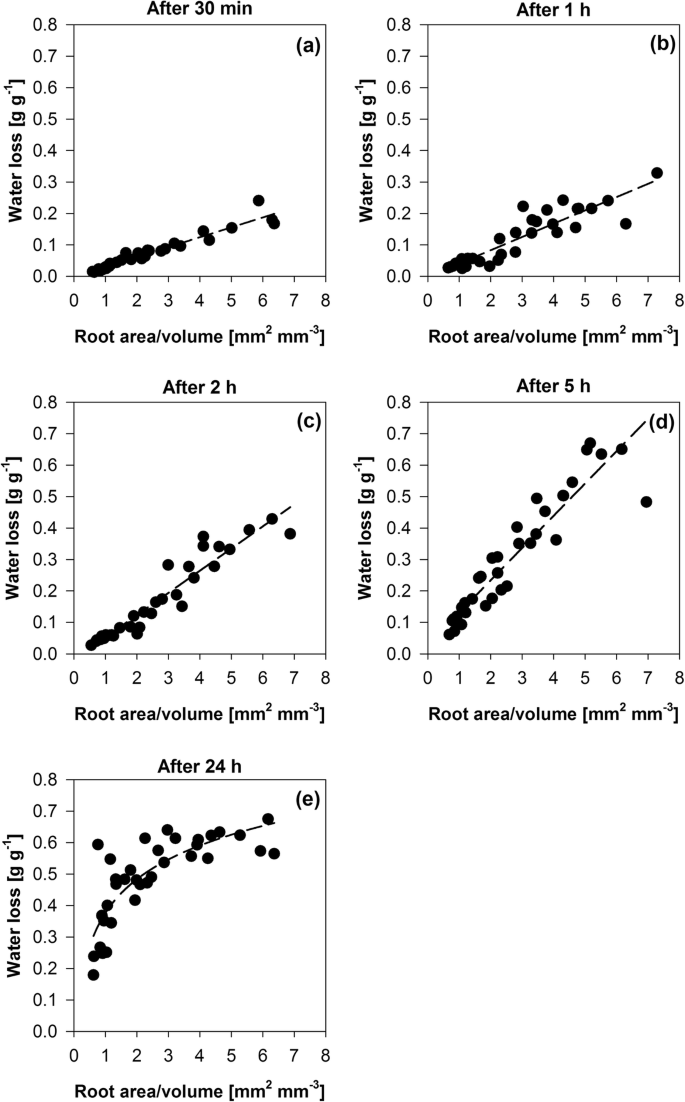 Effects Of Root Dehydration On Biomechanical Properties Of Woody Roots Of Ulex Europaeus Springerlink