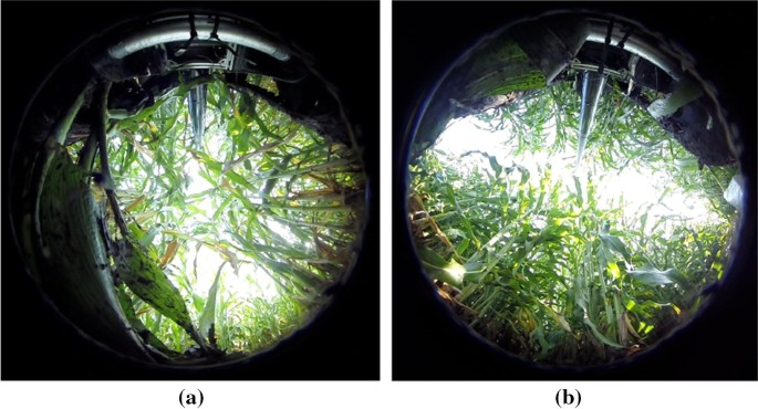 Design and field evaluation of a ground robot for high-throughput ...