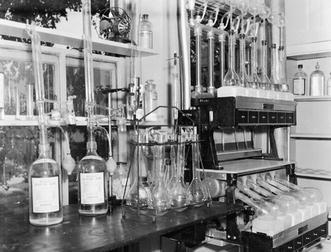 Martin Gibbs (1922–2006): Pioneer of 14 C research, sugar ...