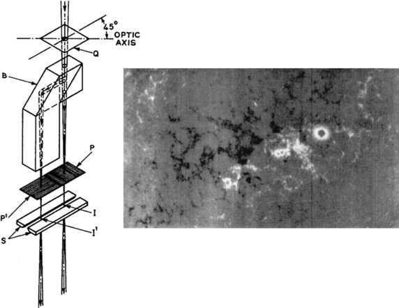 History of Solar Magnetic Fields Since George Ellery Hale ...