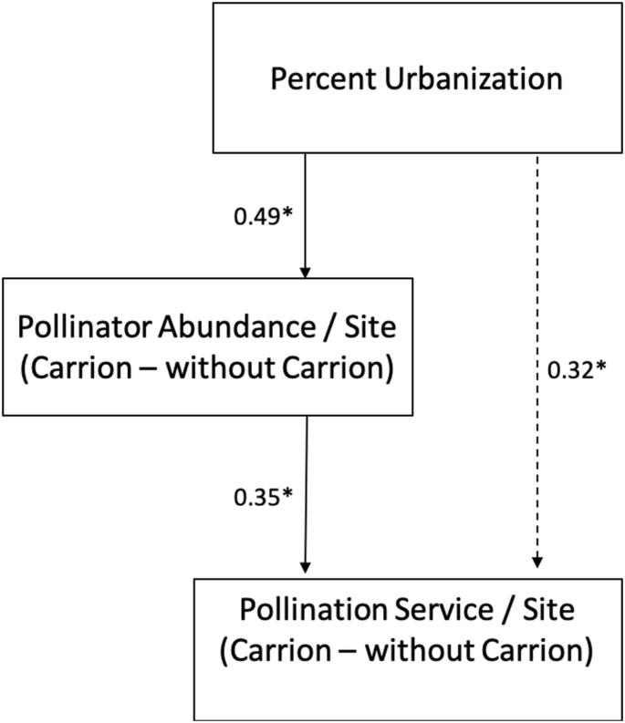 Carrion Increases Pollination Service Across An Urban Gradient