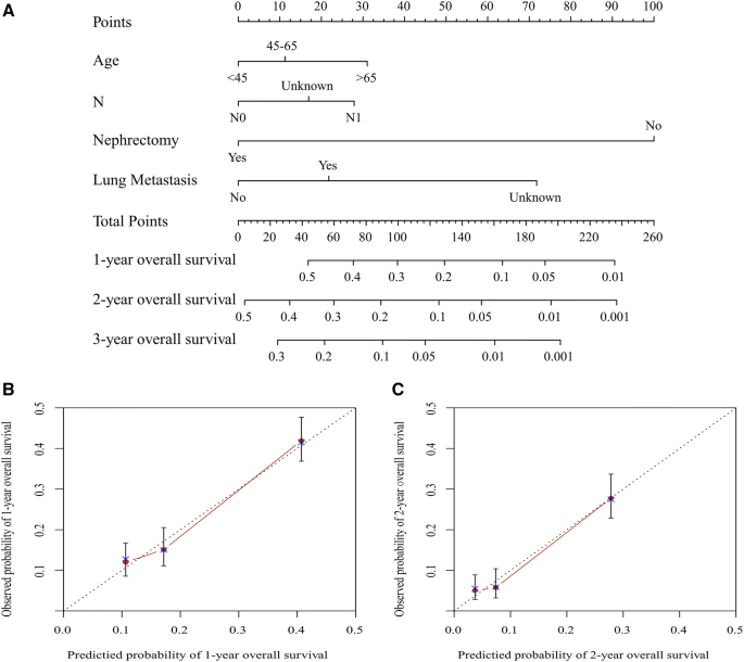 Do Renal Cell Carcinoma Patients With Brain Metastases Still Need Nephrectomy Springerlink