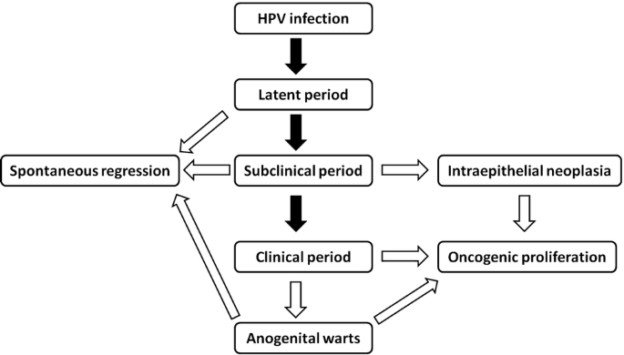 hpv therapy mehmet