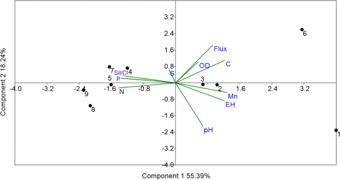 Factors that control the spatial and temporal distributions of ...