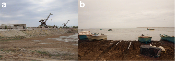 The zoocenosis of the Aral Sea: six decades of fast-paced change ...