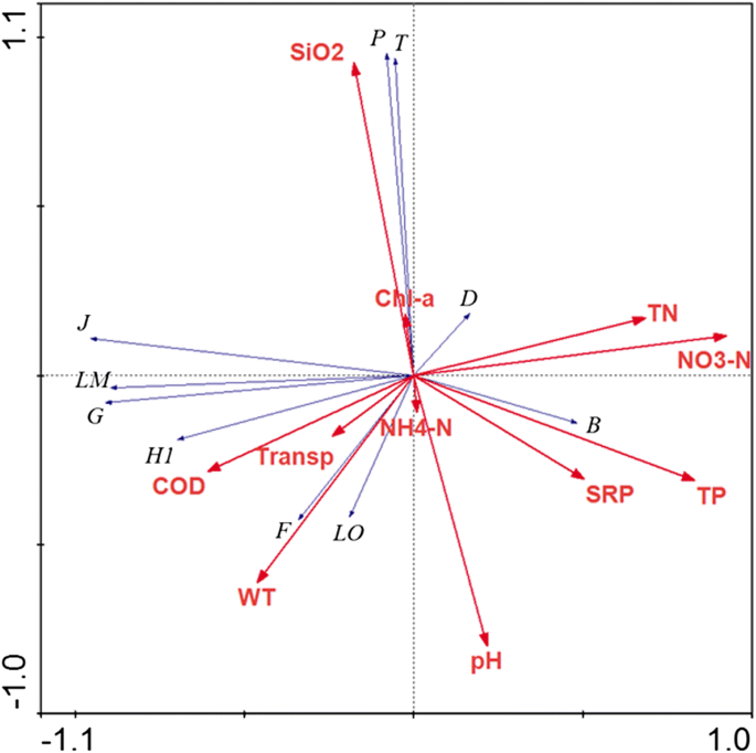 Phytoplankton functional groups in a monomictic reservoir ...