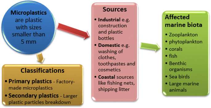 Microplastics In Aquatic Environment Characterization Ecotoxicological Effect Implications For Ecosystems And Developments In South Africa Springerlink Read our guide to find the best pet shipping company for you and your pet. microplastics in aquatic environment