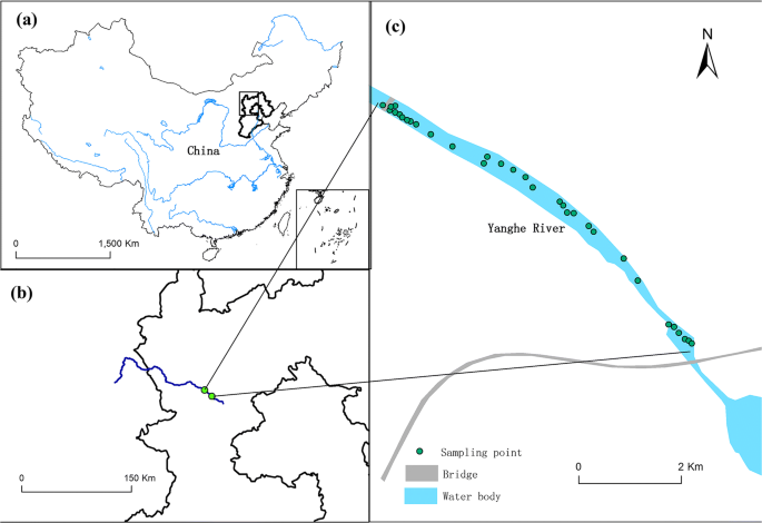 Factors controlling organic carbon distributions in a riverine ...