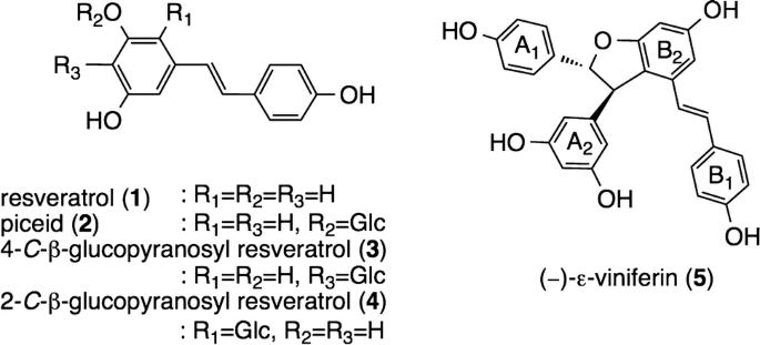 Resveratrol Oligomer Structure In Dipterocarpaceaeous Plants