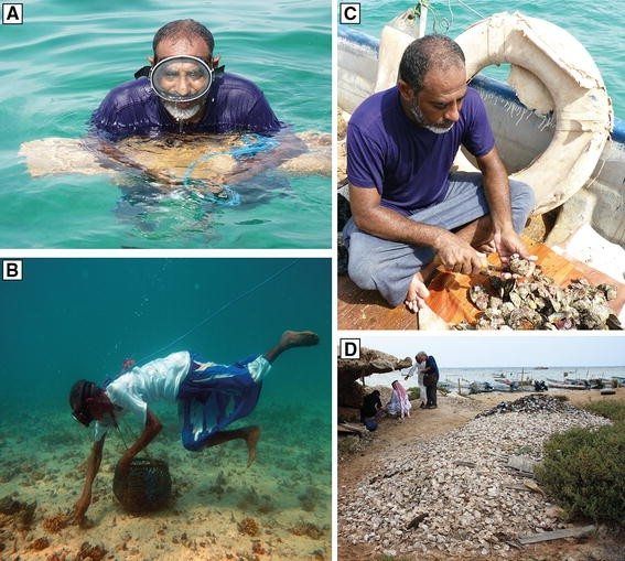 Remembering the Sea: Personal and Communal Recollections of ...