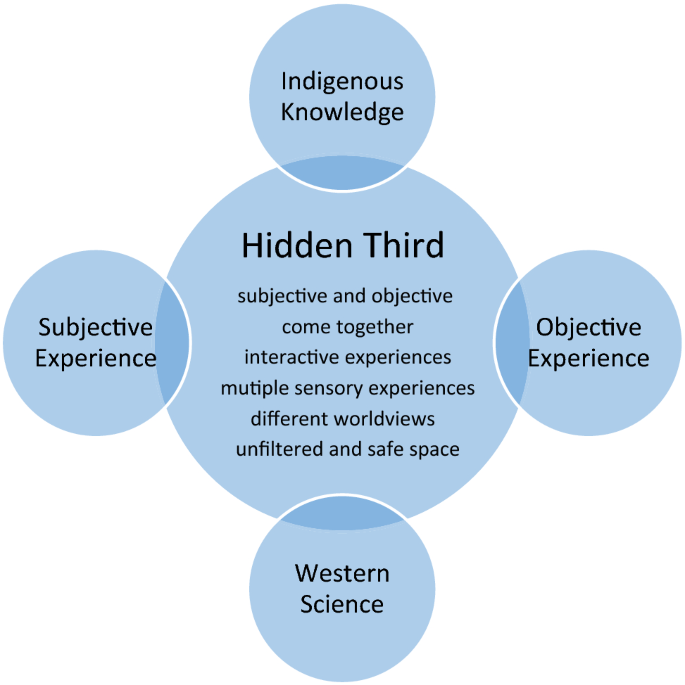 Identifying transformational space for transdisciplinarity: using ...