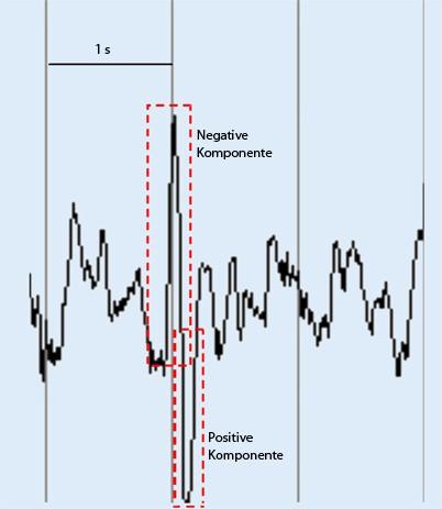 Ergnzende Regeln zu Frequenzen und Graphoelementen der ...