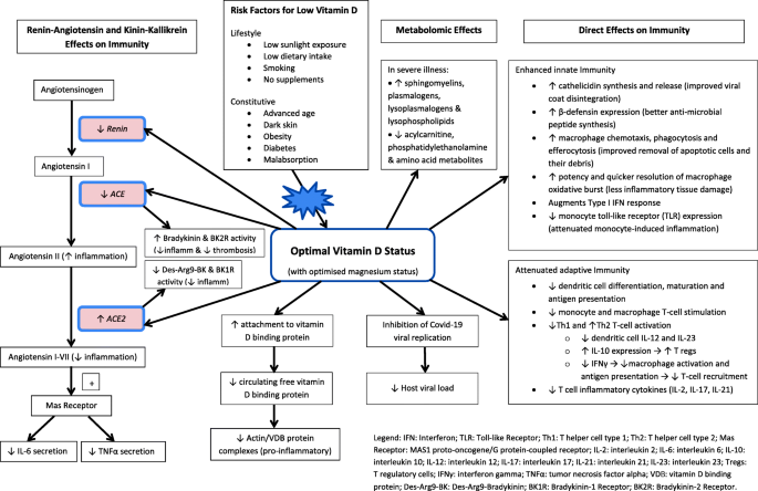 Vitamin D and SARS-CoV-2 infection—evolution of evidence ...