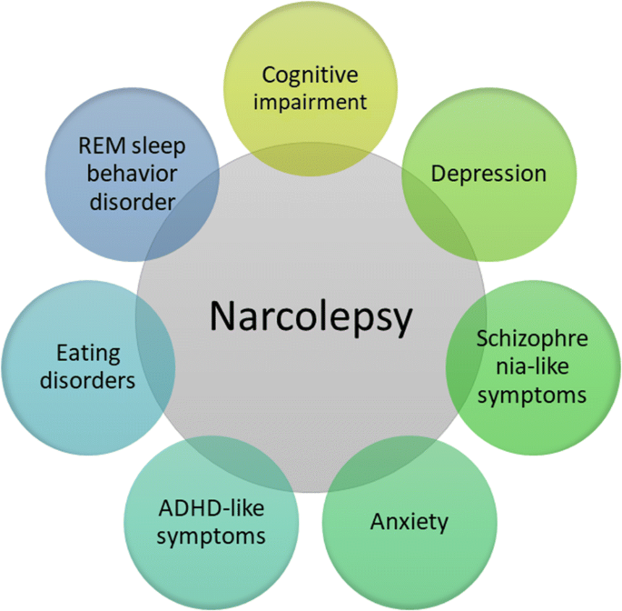 Narcolepsy sleep disorder - Sleep Disorders - Sleep Apnea