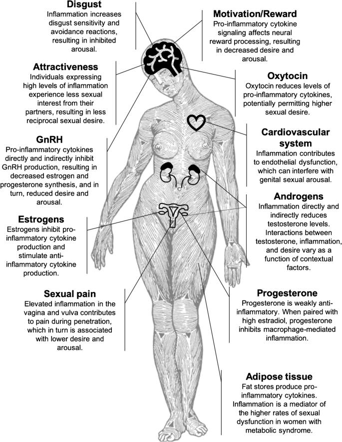 toxin és tarmen