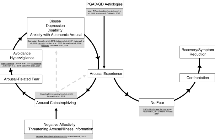Persistent Genital Arousal Disorder: a Biopsychosocial Framework ...