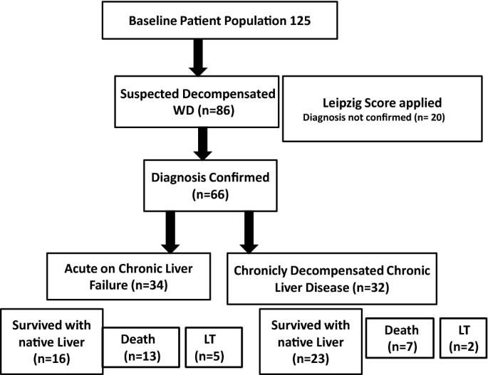 Aarc Aclf Score Best Predictor Of Outcome In Children And Adolescents With Decompensated Wilson Disease Springerlink