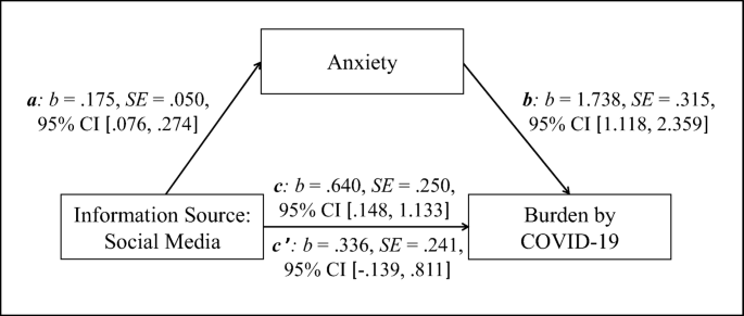 The relationship between social media use, anxiety and burden ...