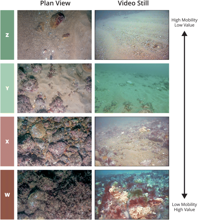 Multi-modal Approach for Benthic Impact Assessments in Moraine ...