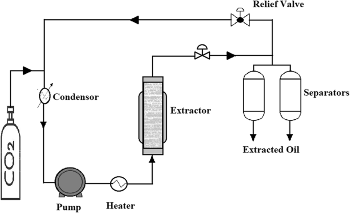 Improving Oil Extraction From Canola Seeds By Conventional And Advanced Methods Springerlink
