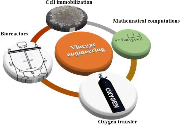 Vinegar Engineering: a Bioprocess Perspective   SpringerLink