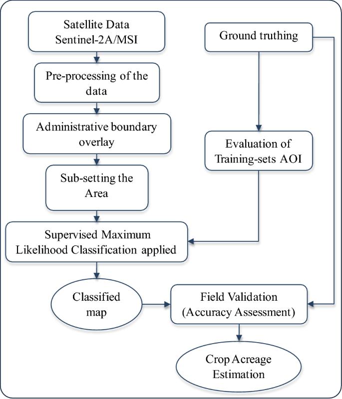 Menthol Mint ( Mentha arvensis L.) Crop Acreage Estimation Using ...