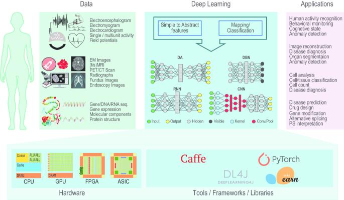 Deep Learning in Mining Biological Data | SpringerLink