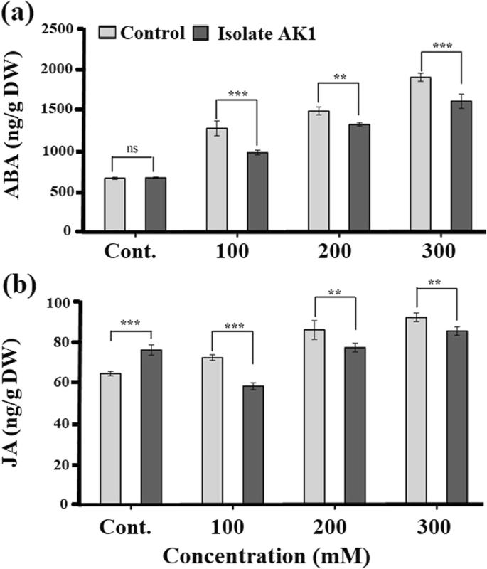 Halo-tolerant rhizospheric Arthrobacter woluwensis AK1 mitigates ...