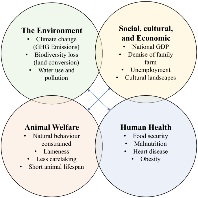 Dairy intensification: Drivers, impacts and alternatives ...
